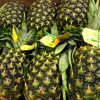 piña fruta tropical