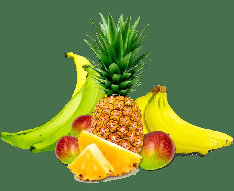frutas tropicales chile